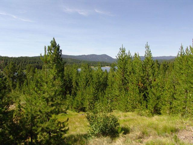 119 Pointes Road, Cascade, ID 83611 (MLS #525037) :: Boise River Realty