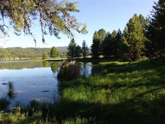 167 Pointes Road, Cascade, ID 83611 (MLS #525143) :: Juniper Realty Group
