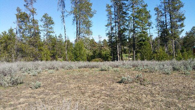 13054 Eld Lane, Donnelly, ID 83615 (MLS #525171) :: Juniper Realty Group