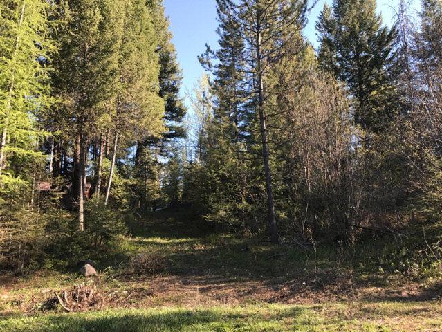 906 Wildhorse Drive, McCall, ID 83638 (MLS #525172) :: Juniper Realty Group