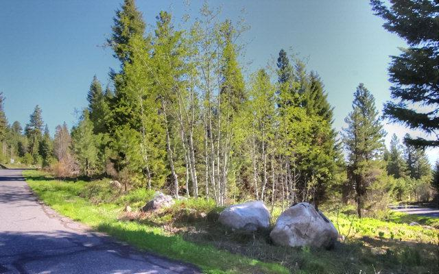 1645 Lakeridge Drive, McCall, ID 83638 (MLS #525212) :: Juniper Realty Group