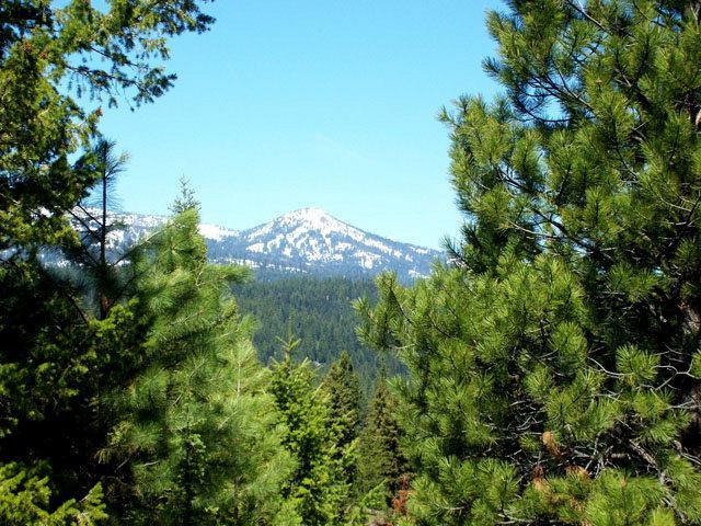 L17 B2 Coit Drive, Cascade, ID 83611 (MLS #525235) :: Boise River Realty