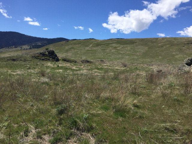 1 Whitewater Wilderness Drive, Pollock, ID 83547 (MLS #525279) :: Juniper Realty Group