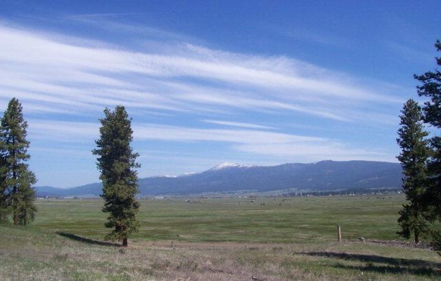 Lot 24 Timber Ridge Drive, New Meadows, ID 83654 (MLS #525304) :: Juniper Realty Group