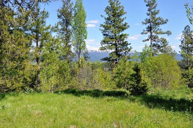 53 Sundance Drive, McCall, ID 83638 (MLS #525440) :: Juniper Realty Group