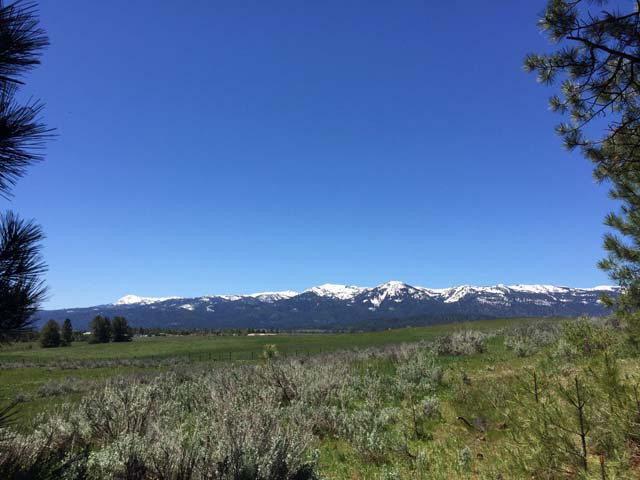 28 Carey Way, Cascade, ID 83611 (MLS #525541) :: Juniper Realty Group