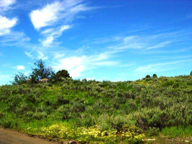 Lot 7 B2 Wilderness Lake Road, Cascade, ID 83611 (MLS #525637) :: Juniper Realty Group