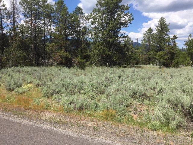 152 Forest Place, Donnelly, ID 83615 (MLS #525719) :: Juniper Realty Group