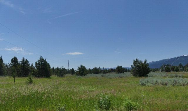 13254 Brookie Road, Donnelly, ID 83615 (MLS #525724) :: Juniper Realty Group