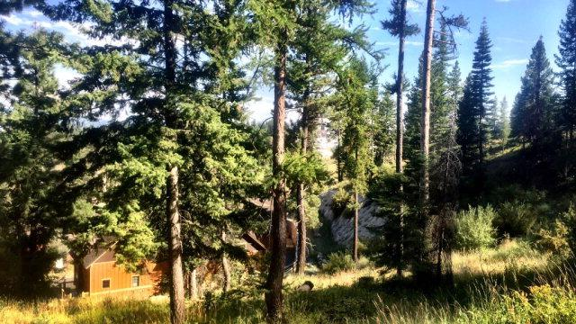 89 Veil Cave Court, Tamarack, ID 83615 (MLS #525900) :: Juniper Realty Group