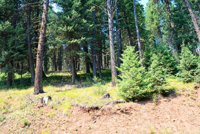 TBD Thistle Down Road, New Meadows, ID 83654 (MLS #525936) :: Juniper Realty Group
