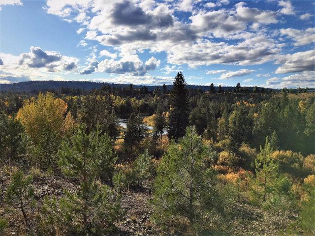 Lot 14 River Ranch Road, McCall, ID 83638 (MLS #526196) :: Juniper Realty Group