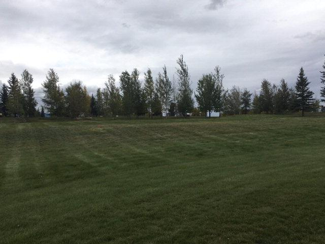 Lot 103 Saddle Lane, McCall, ID 83638 (MLS #526200) :: Juniper Realty Group