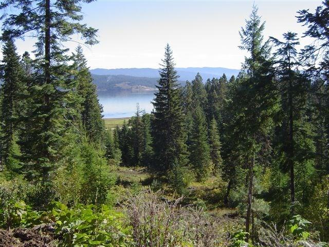 TBD West Mountain Road, Cascade, ID 83611 (MLS #526339) :: Juniper Realty Group