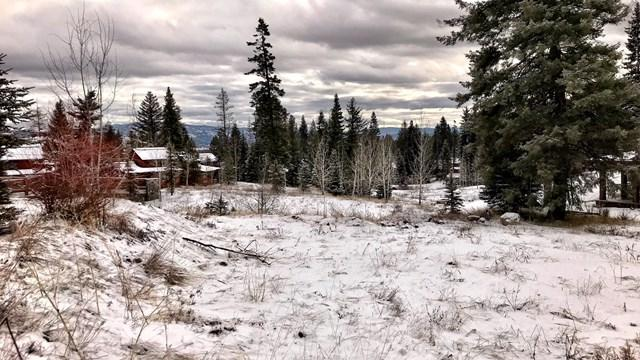 90 Sugarloaf Place, Tamarack, ID 83615 (MLS #526348) :: Juniper Realty Group
