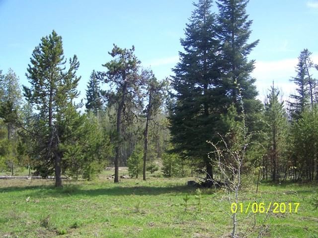 256 Day Star Lane, Donnelly, ID 83615 (MLS #526382) :: Juniper Realty Group