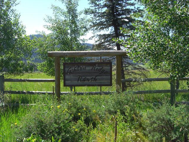 ONE Ashton Ridge Place, McCall, ID 83638 (MLS #526437) :: Juniper Realty Group
