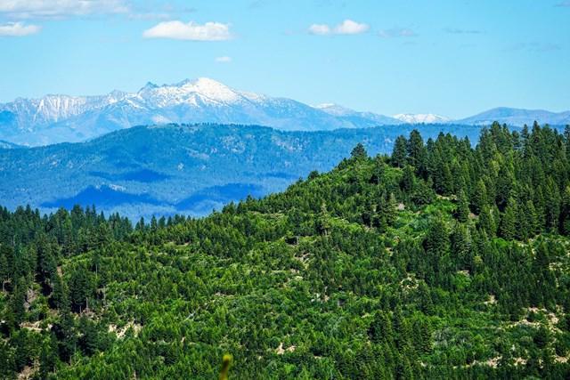 1 None, Idaho City, ID 83631 (MLS #526479) :: Juniper Realty Group