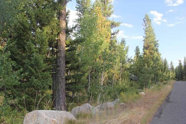 1596 Lakeridge Drive, McCall, ID 83638 (MLS #526490) :: Juniper Realty Group