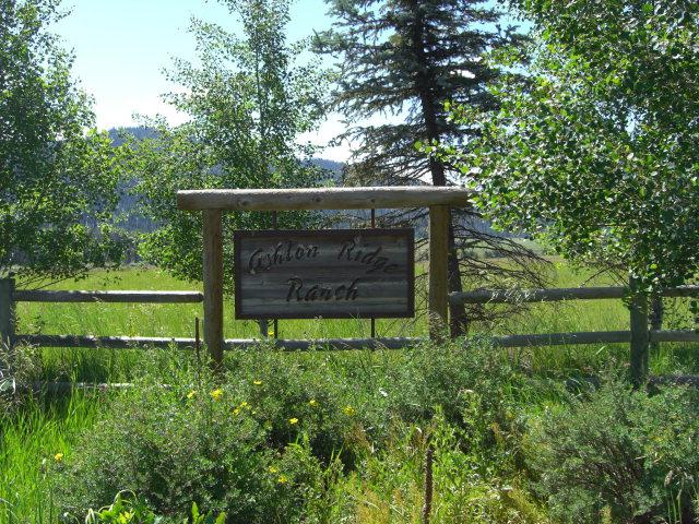 FIVE Ashton Ridge Place, McCall, ID 83638 (MLS #526513) :: Juniper Realty Group