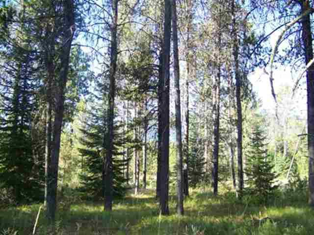 15 Spring Water Court, Donnelly, ID 83615 (MLS #526581) :: Juniper Realty Group