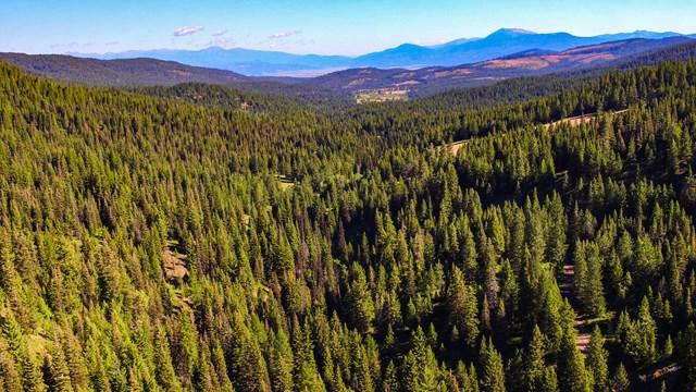 1 West Mountain Road, McCall, ID 83638 (MLS #526627) :: Boise River Realty