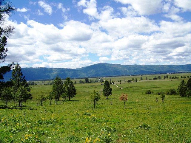 TBD Harala Lane, Donnelly, ID 83615 (MLS #526781) :: Juniper Realty Group
