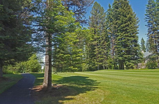 TBD Eagle Drive, McCall, ID 83638 (MLS #526862) :: Juniper Realty Group