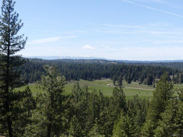 TBD Whitefield, McCall, ID 83638 (MLS #526878) :: Juniper Realty Group
