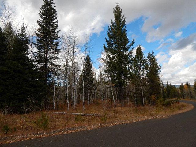 TBD Sundance Drive, McCall, ID 83638 (MLS #526904) :: Juniper Realty Group