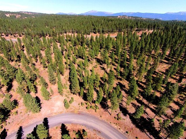 Lot # 12 West Pine Drive, New Meadows, ID 83654 (MLS #527034) :: Juniper Realty Group