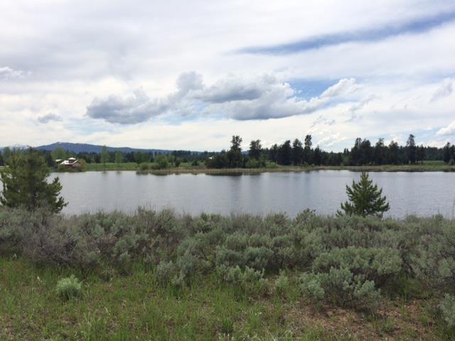 313 Otter Pond Lane, McCall, ID 83638 (MLS #527209) :: Juniper Realty Group