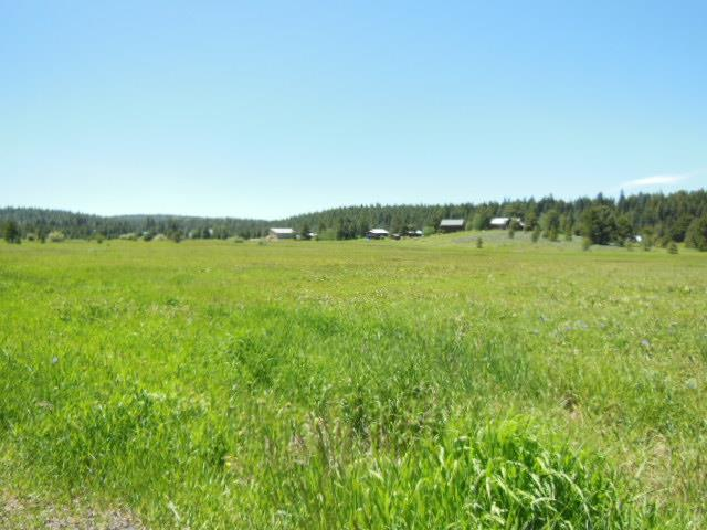 Lot 1 Whitefield, McCall, ID 83638 (MLS #527349) :: Juniper Realty Group