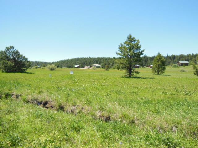 Lot 2 Whitefield, McCall, ID 83638 (MLS #527350) :: Juniper Realty Group