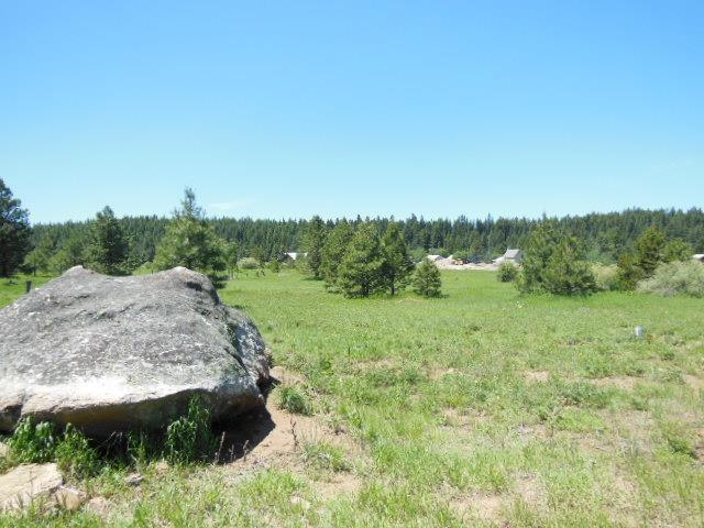 Lot 3 Whitefield, McCall, ID 83638 (MLS #527351) :: Juniper Realty Group