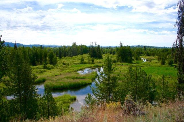 Lot 7 Sawtooth Court, McCall, ID 83638 (MLS #527499) :: Juniper Realty Group