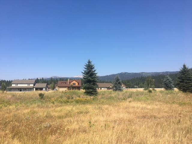 22 Ginney Way, McCall, ID 83638 (MLS #527783) :: Juniper Realty Group
