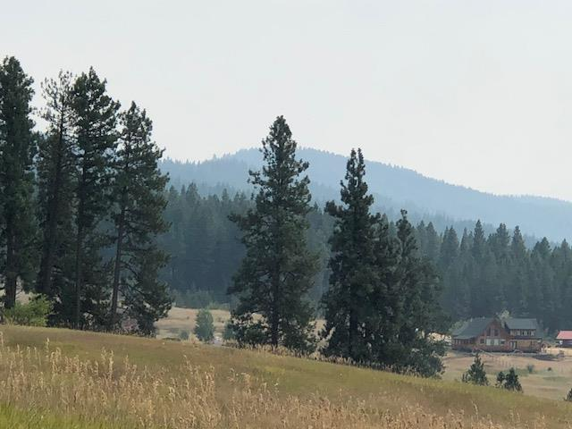 TBD Canyon Creek Way, New Meadows, ID 83654 (MLS #527819) :: Juniper Realty Group