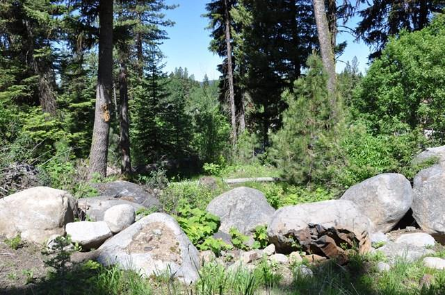 TBD Majestic View Drive, McCall, ID 83638 (MLS #528106) :: Juniper Realty Group