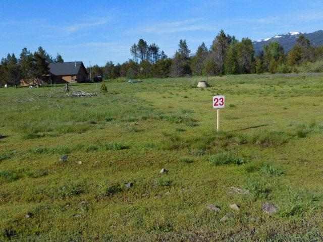 161 Meadow Place, Donnelly, ID 83615 (MLS #528325) :: Silvercreek Realty Group