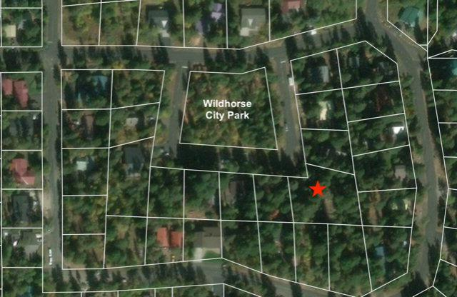 914 Wildhorse Drive, McCall, ID 83638 (MLS #528681) :: Silvercreek Realty Group