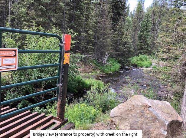 1801 Boulder Lake Road, McCall, ID 83638 (MLS #529654) :: Silvercreek Realty Group