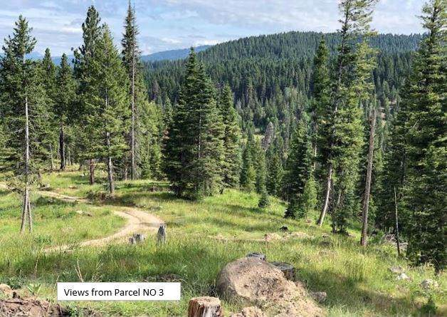 1801-17 Boulder Lake Road, McCall, ID 83638 (MLS #529656) :: Silvercreek Realty Group