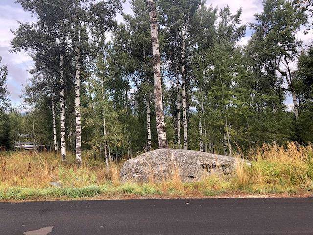 1341 Aspen Ridge Lane, McCall, ID 83638 (MLS #529757) :: Adam Alexander
