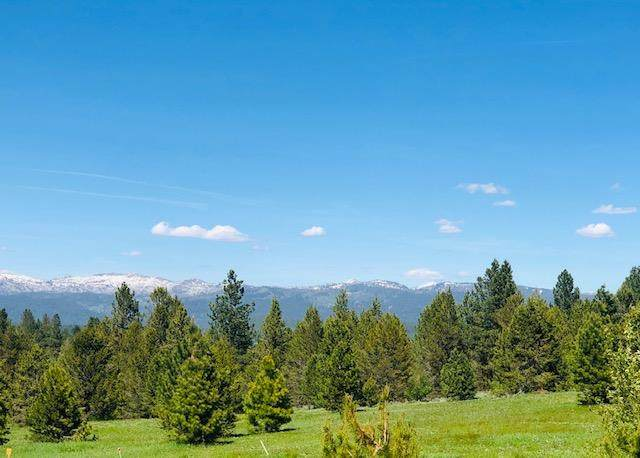 Lot 3B Tranquility Lane, McCall, ID 83638 (MLS #532194) :: Boise River Realty