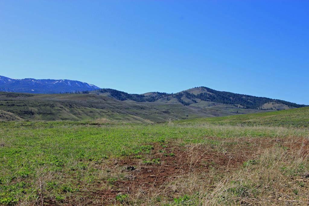TBD Hornet Creek Road - Photo 1