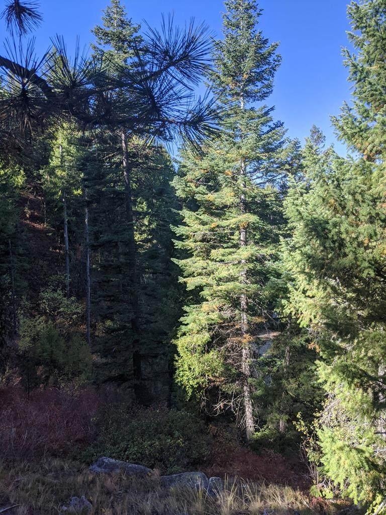 31A Mountain Air Drive - Photo 1