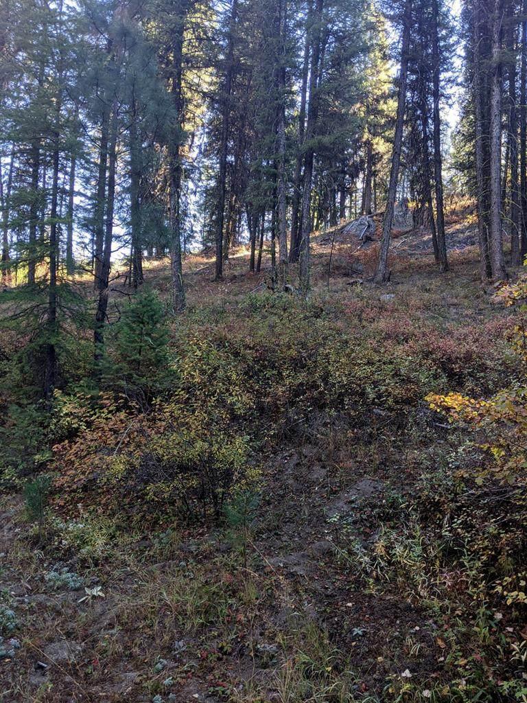 31B Mountain Air Drive - Photo 1
