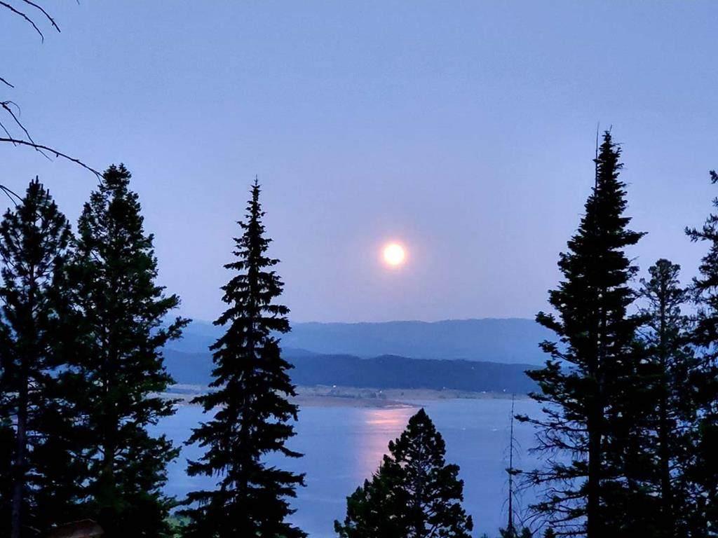 123 Arling Trail - Photo 1