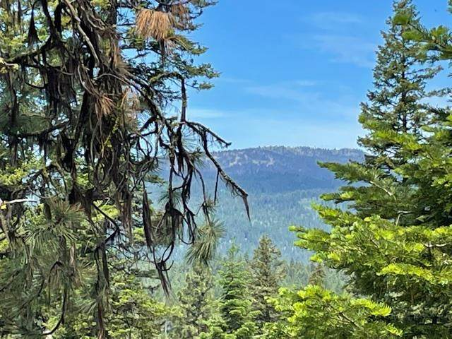 Lot 39 Majestic View Circle, McCall, ID 83638 (MLS #532688) :: Scott Swan Real Estate Group